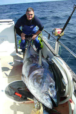 Tony's Giant Bluefin Tuna